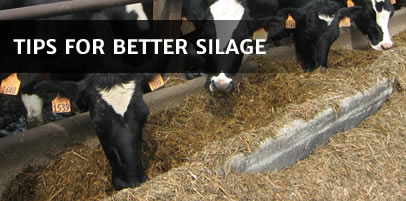 Silage Tips, Advice and Equipment